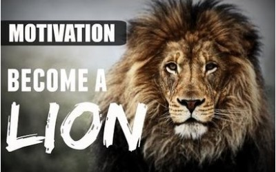 MOTIVATION – BECOME A LION